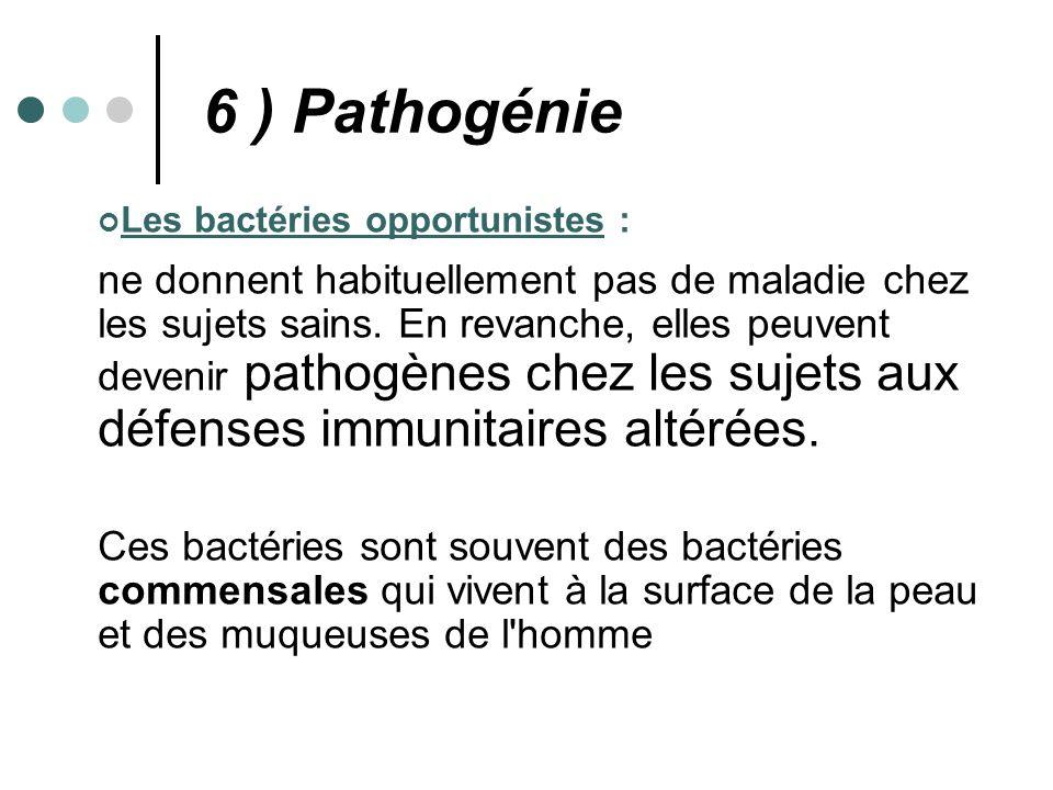 Les bactéries opportunistes : ne donnent habituellement pas de maladie chez les sujets sains. En revanche, elles peuvent devenir pathogènes chez les s