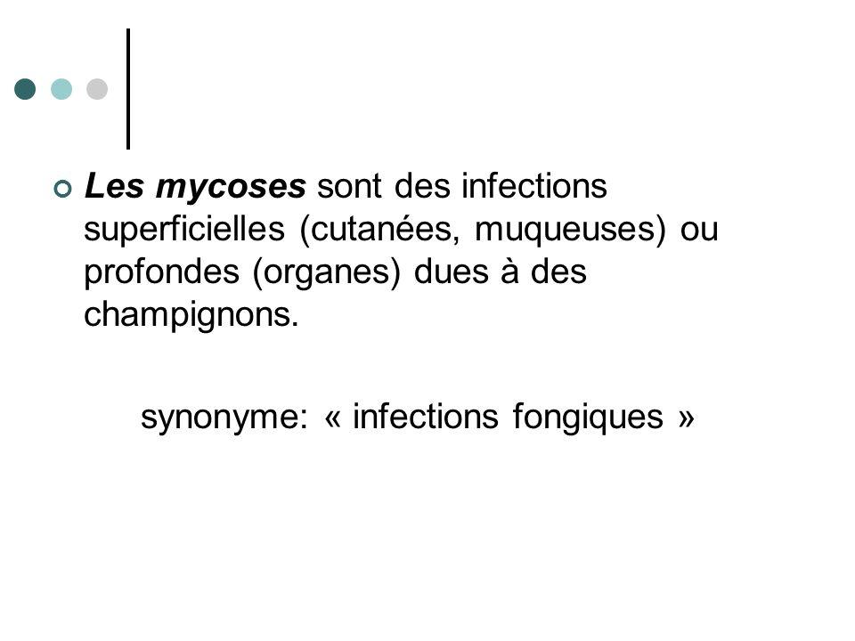 Les mycoses sont des infections superficielles (cutanées, muqueuses) ou profondes (organes) dues à des champignons. synonyme: « infections fongiques »