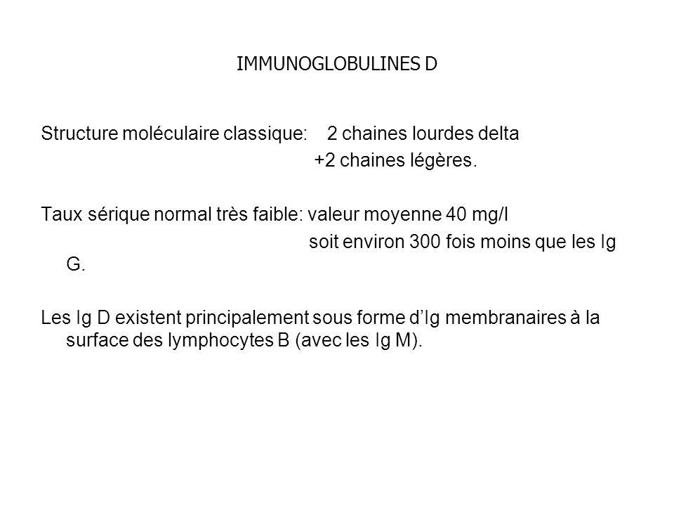 IMMUNOGLOBULINES D Structure moléculaire classique: 2 chaines lourdes delta +2 chaines légères. Taux sérique normal très faible: valeur moyenne 40 mg/