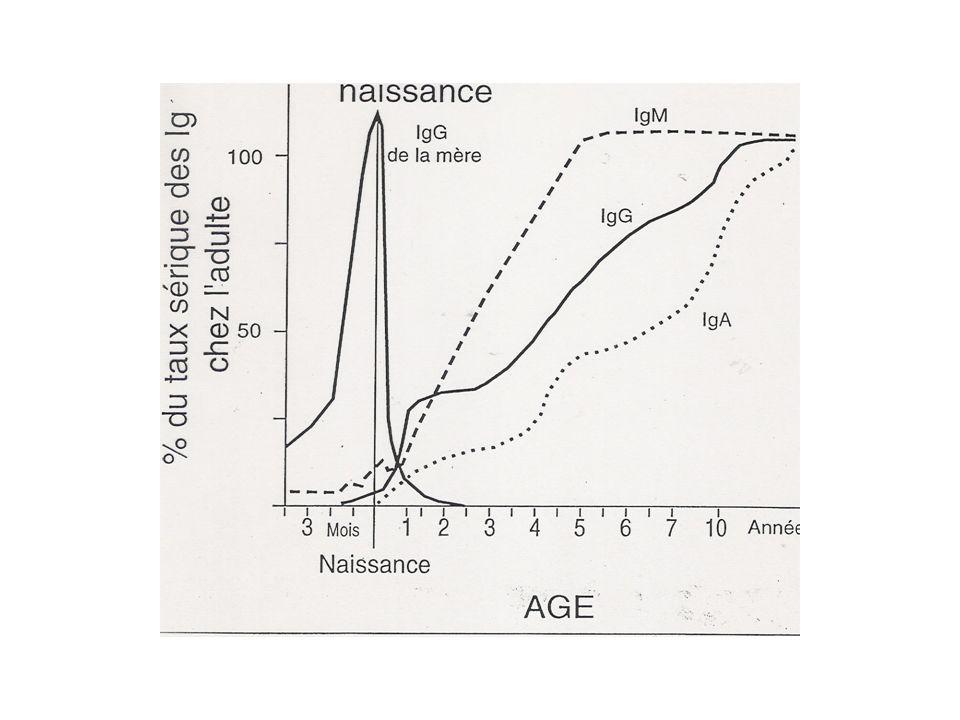 LE COMPLEXE MAJEUR DHISTOCOMPATIBILITE 1° travaux chez la souris: tentatives de greffes(P.Gorer,G.Snell) Puis mise en évidence chez lhomme= Système HLA (=« Human Leucocyte Antigens ».