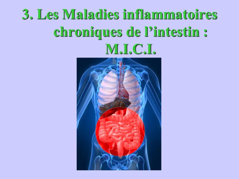 3. Les Maladies inflammatoires chroniques de lintestin : M.I.C.I.