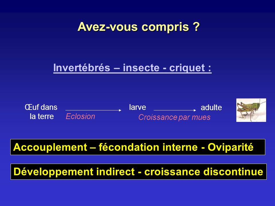 Invertébrés – insecte - criquet : Œuf dans la terre larve Eclosion adulte Croissance par mues Développement indirect - croissance discontinue Avez-vou