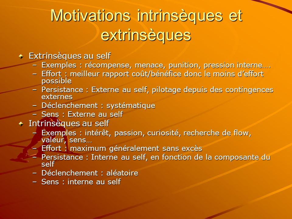 Motivateurs