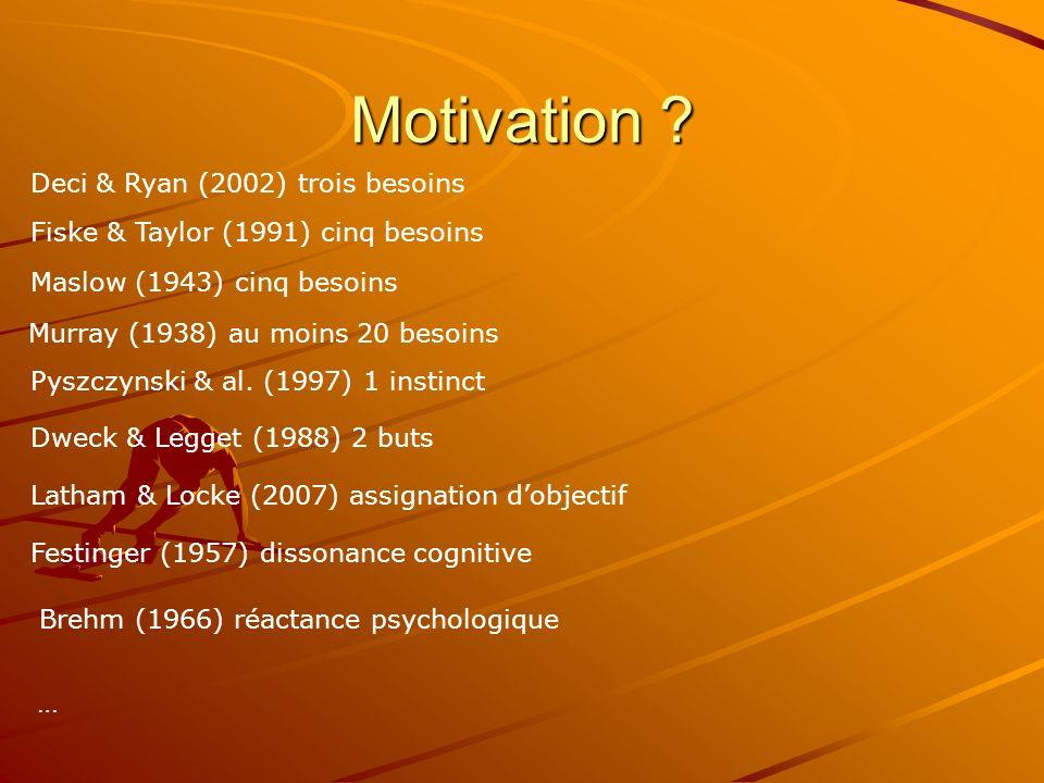 Résultat Les recherches sur la motivation ont comme particularité de pouvoir prendre en considération tous types de résultats –De multiples résultats sont envisageables pour une seule action –Des interprétations autre que motivationnelles sont généralement possibles Certains résultats restent spécifiques à la motivation : Flow, flânerie sociale…