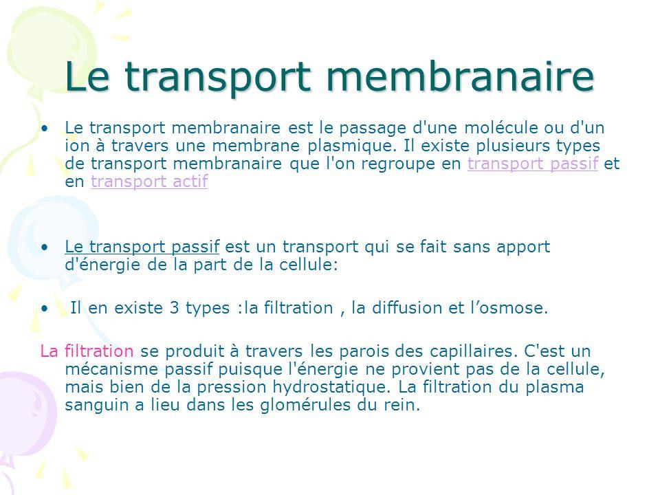 Le transport membranaire Le transport membranaire est le passage d'une molécule ou d'un ion à travers une membrane plasmique. Il existe plusieurs type