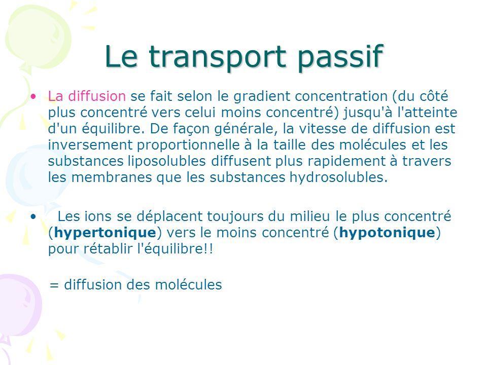 Le transport passif La diffusion se fait selon le gradient concentration (du côté plus concentré vers celui moins concentré) jusqu'à l'atteinte d'un é