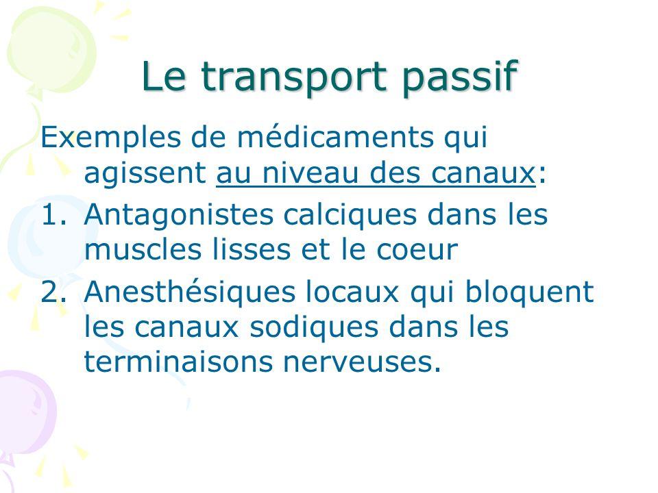 Le transport passif Exemples de médicaments qui agissent au niveau des canaux: 1.Antagonistes calciques dans les muscles lisses et le coeur 2.Anesthés