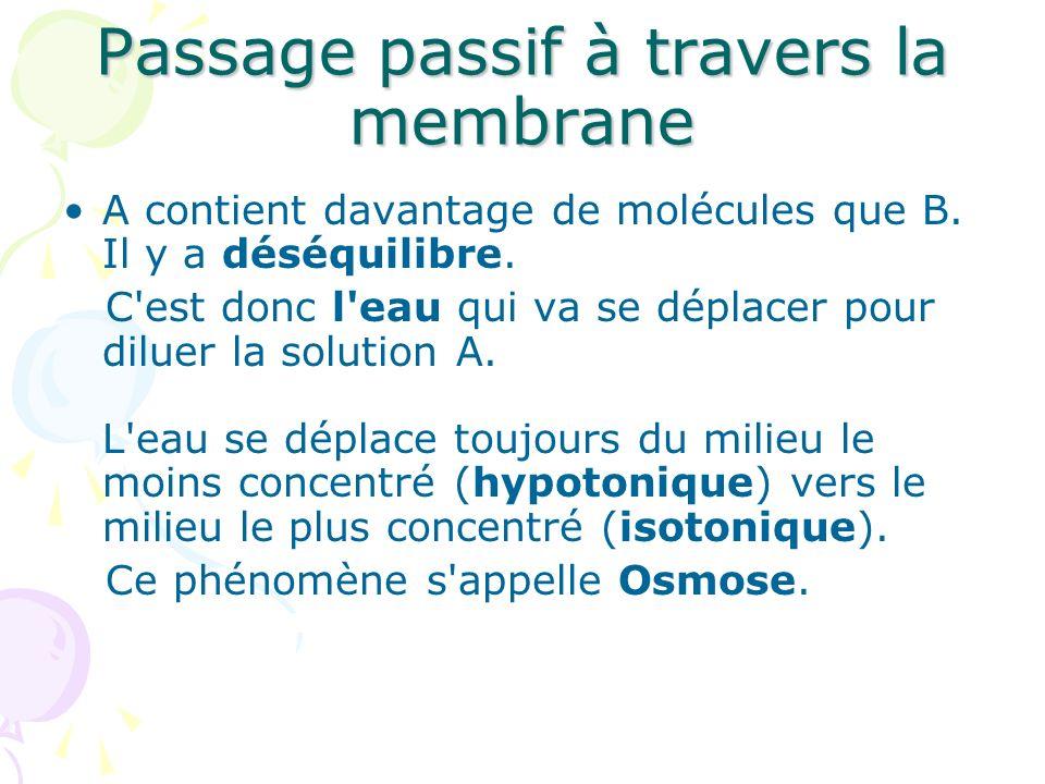 Passage passif à travers la membrane A contient davantage de molécules que B. Il y a déséquilibre. C'est donc l'eau qui va se déplacer pour diluer la