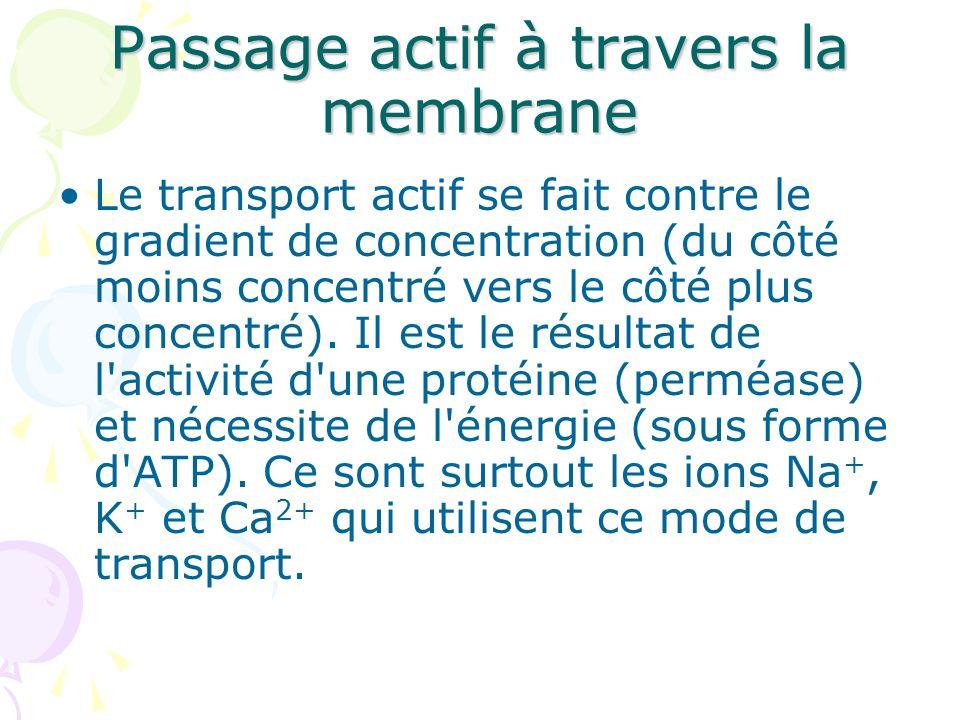 Passage actif à travers la membrane Le transport actif se fait contre le gradient de concentration (du côté moins concentré vers le côté plus concentr
