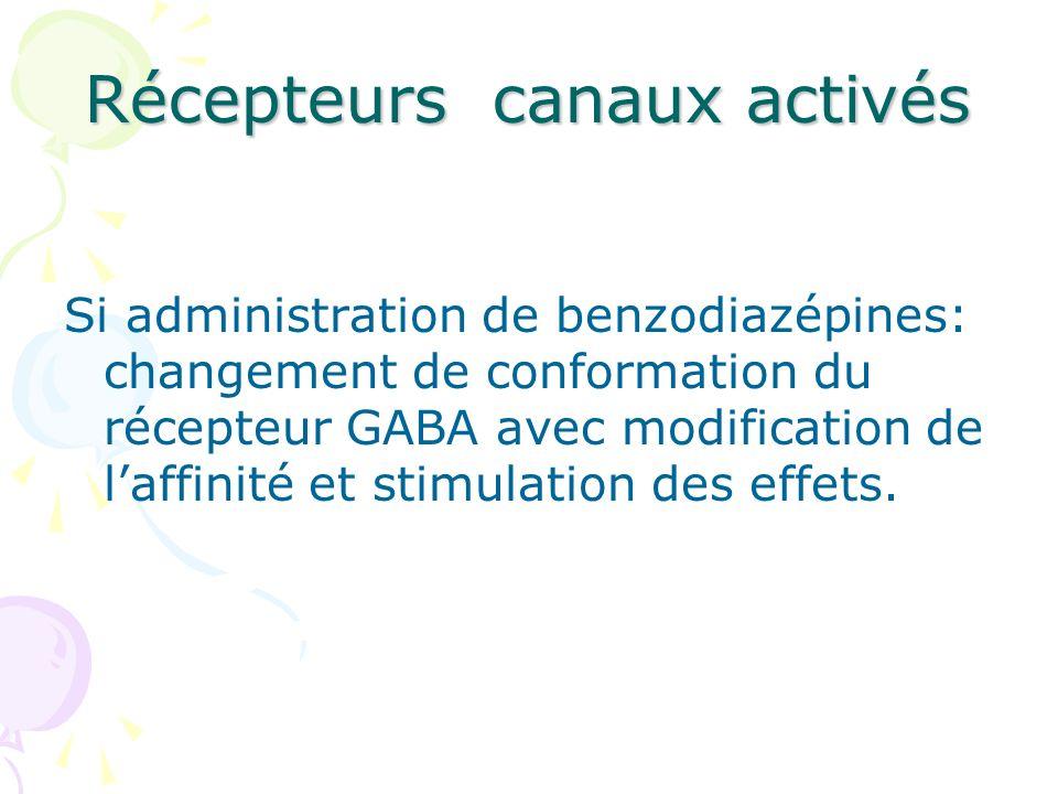 Récepteurs canaux activés Si administration de benzodiazépines: changement de conformation du récepteur GABA avec modification de laffinité et stimula
