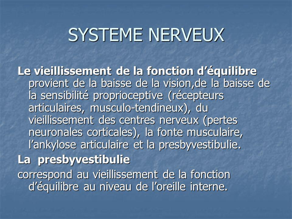 SYSTEME NERVEUX Le vieillissement de la fonction déquilibre provient de la baisse de la vision,de la baisse de la sensibilité proprioceptive (récepteurs articulaires, musculo-tendineux), du vieillissement des centres nerveux (pertes neuronales corticales), la fonte musculaire, lankylose articulaire et la presbyvestibulie.