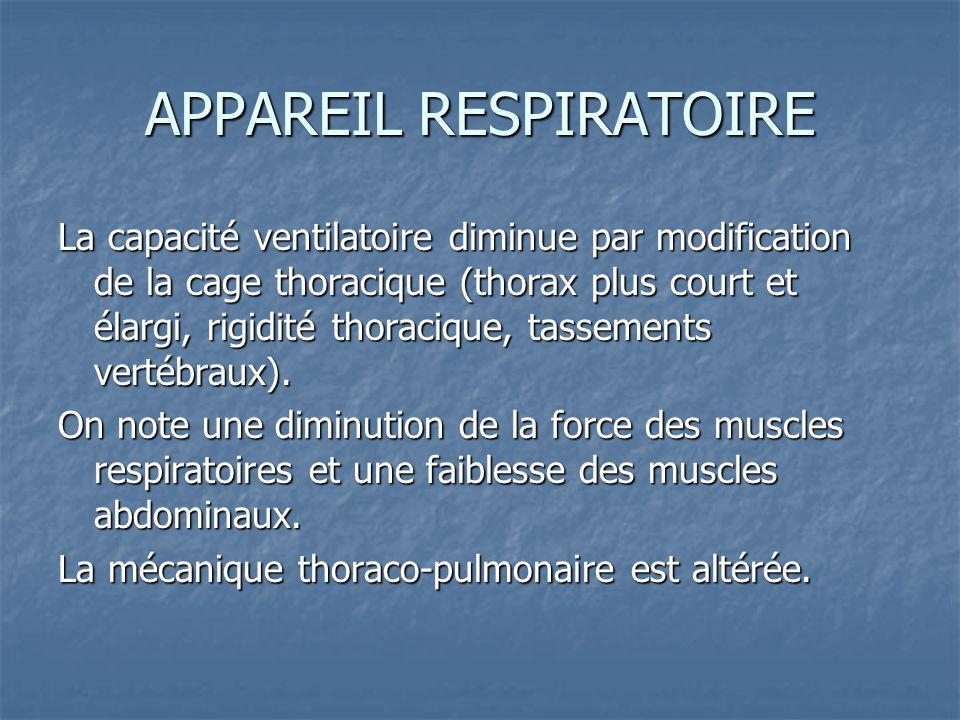 APPAREIL RESPIRATOIRE La capacité ventilatoire diminue par modification de la cage thoracique (thorax plus court et élargi, rigidité thoracique, tassements vertébraux).