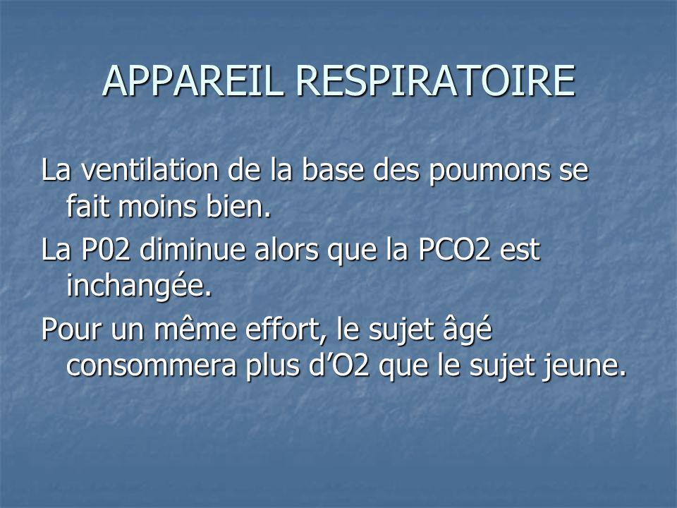 APPAREIL RESPIRATOIRE La ventilation de la base des poumons se fait moins bien.