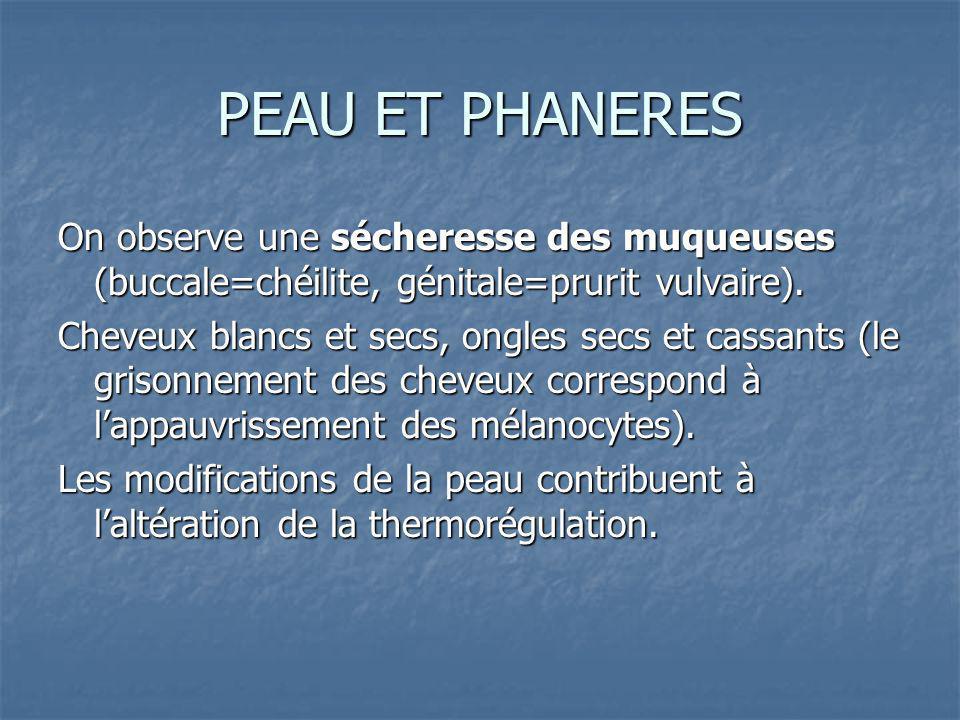 PEAU ET PHANERES On observe une sécheresse des muqueuses (buccale=chéilite, génitale=prurit vulvaire).