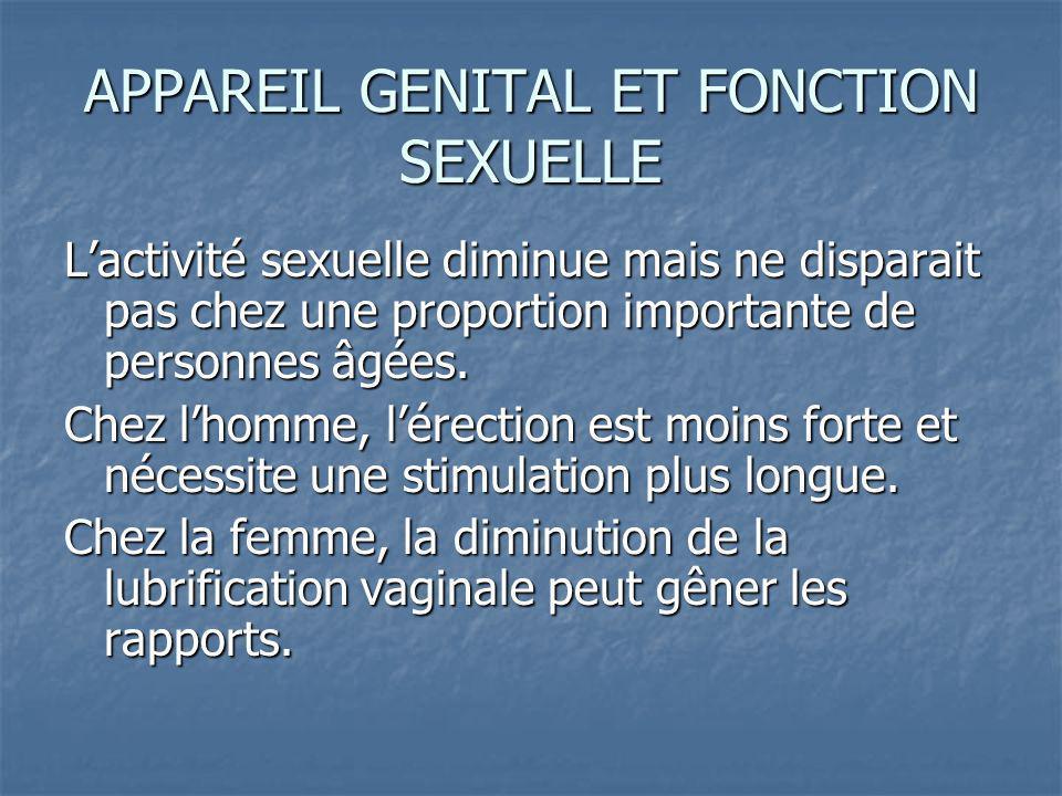 APPAREIL GENITAL ET FONCTION SEXUELLE Lactivité sexuelle diminue mais ne disparait pas chez une proportion importante de personnes âgées.