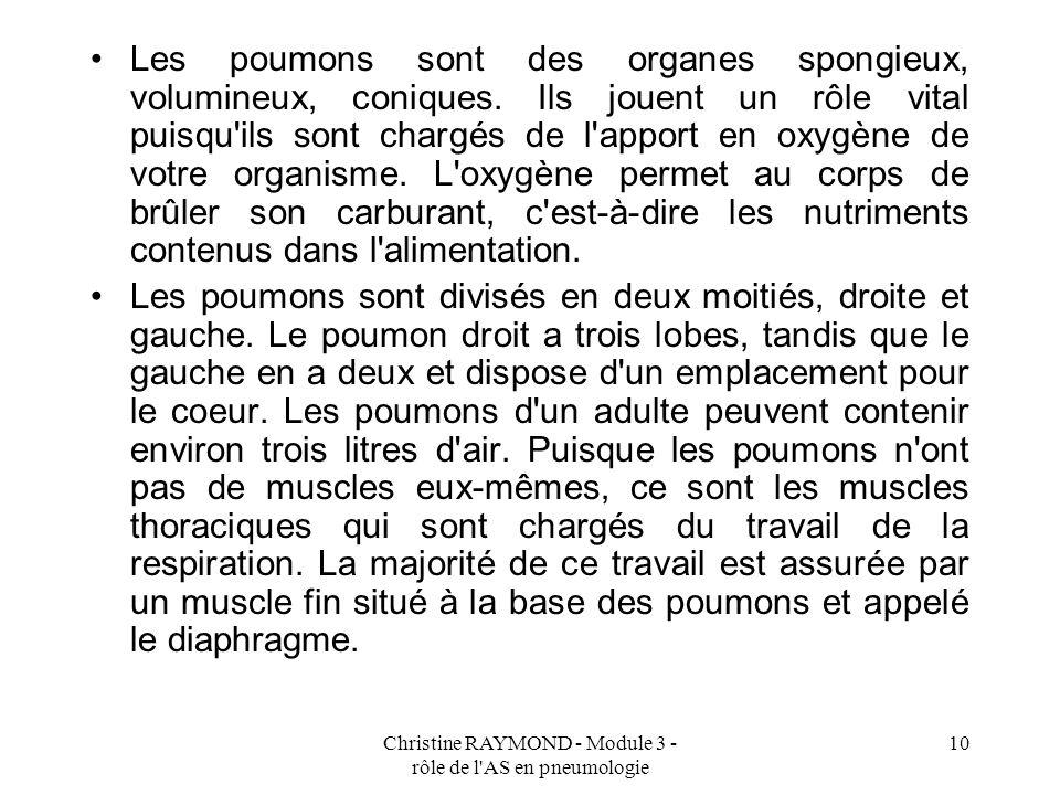 Christine RAYMOND - Module 3 - rôle de l'AS en pneumologie 10 Les poumons sont des organes spongieux, volumineux, coniques. Ils jouent un rôle vital p