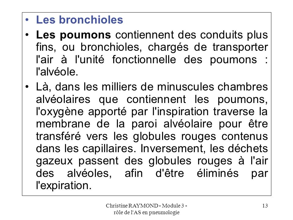 Christine RAYMOND - Module 3 - rôle de l AS en pneumologie 13 Les bronchioles Les poumons contiennent des conduits plus fins, ou bronchioles, chargés de transporter l air à l unité fonctionnelle des poumons : l alvéole.