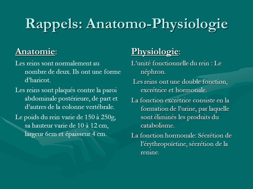 Rappels: Anatomo-Physiologie Anatomie: Les reins sont normalement au nombre de deux. Ils ont une forme dharicot. Les reins sont plaqués contre la paro
