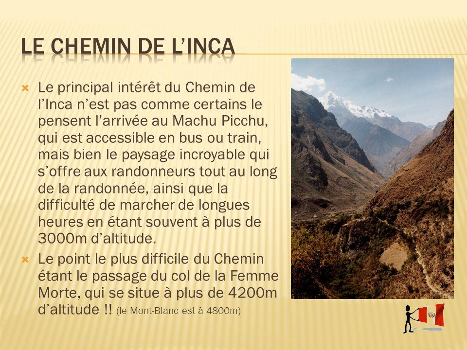 Le principal intérêt du Chemin de lInca nest pas comme certains le pensent larrivée au Machu Picchu, qui est accessible en bus ou train, mais bien le