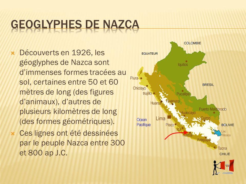 Découverts en 1926, les géoglyphes de Nazca sont dimmenses formes tracées au sol, certaines entre 50 et 60 mètres de long (des figures danimaux), daut