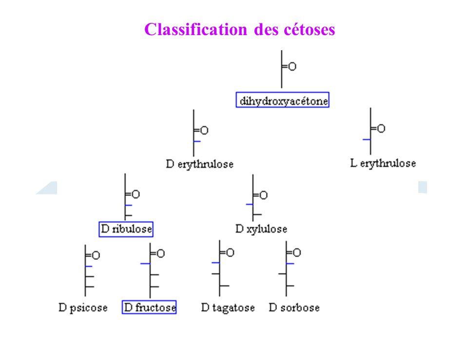 Classification des cétoses