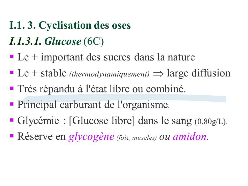 I.1. 3. Cyclisation des oses I.1.3.1. Glucose (6C) Le + important des sucres dans la nature Le + stable (thermodynamiquement) large diffusion Très rép