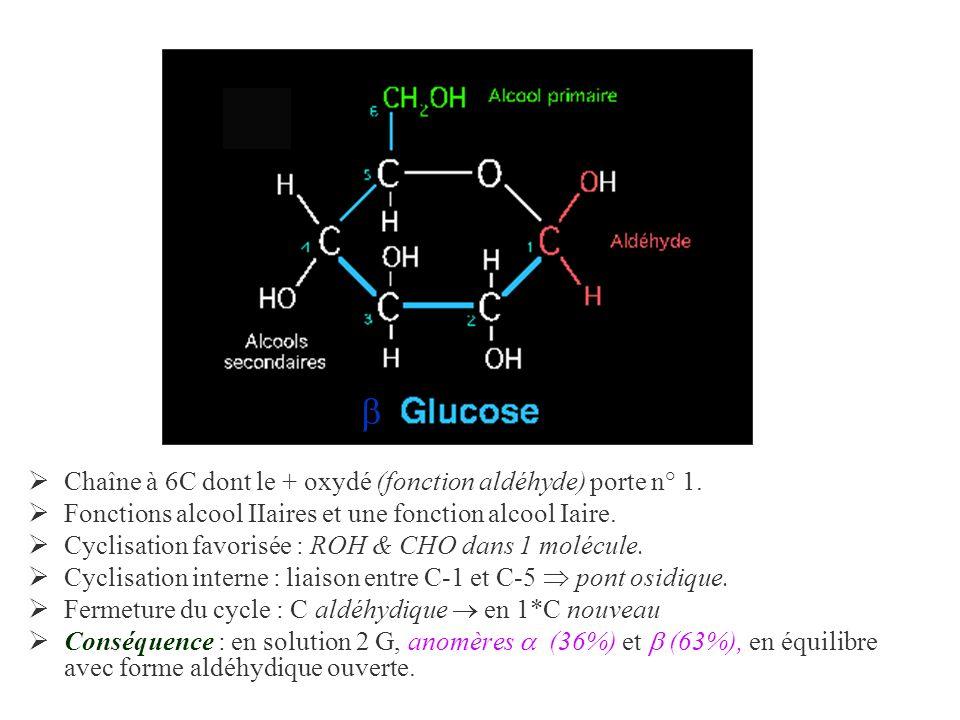 Chaîne à 6C dont le + oxydé (fonction aldéhyde) porte n° 1. Fonctions alcool IIaires et une fonction alcool Iaire. Cyclisation favorisée : ROH & CHO d