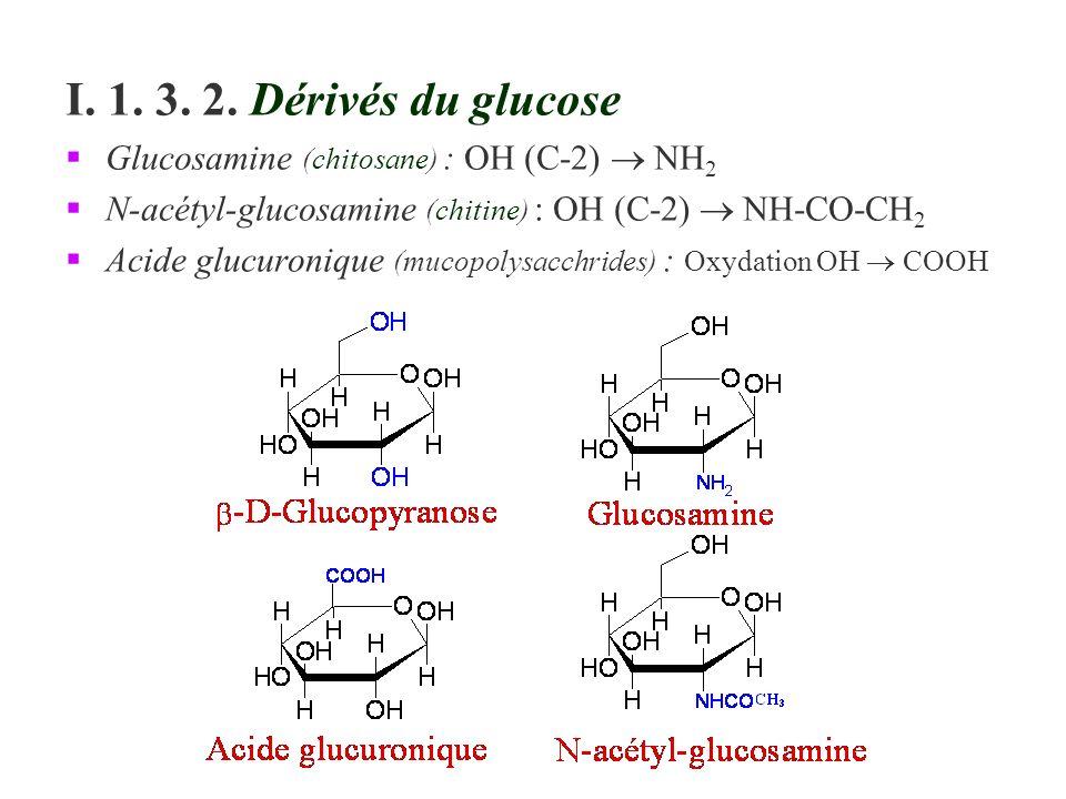 I. 1. 3. 2. Dérivés du glucose Glucosamine (chitosane) : OH (C-2) NH 2 N-acétyl-glucosamine (chitine) : OH (C-2) NH-CO-CH 2 Acide glucuronique (mucopo