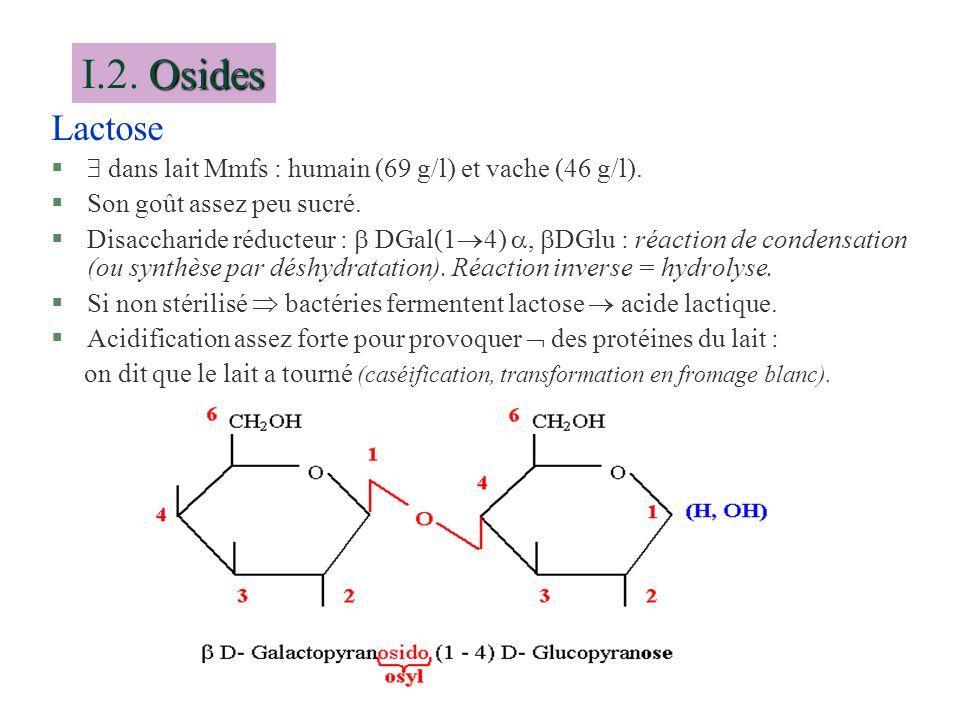 Lactose § dans lait Mmfs : humain (69 g/l) et vache (46 g/l). §Son goût assez peu sucré. §Disaccharide réducteur : DGal(1 4), DGlu : réaction de conde