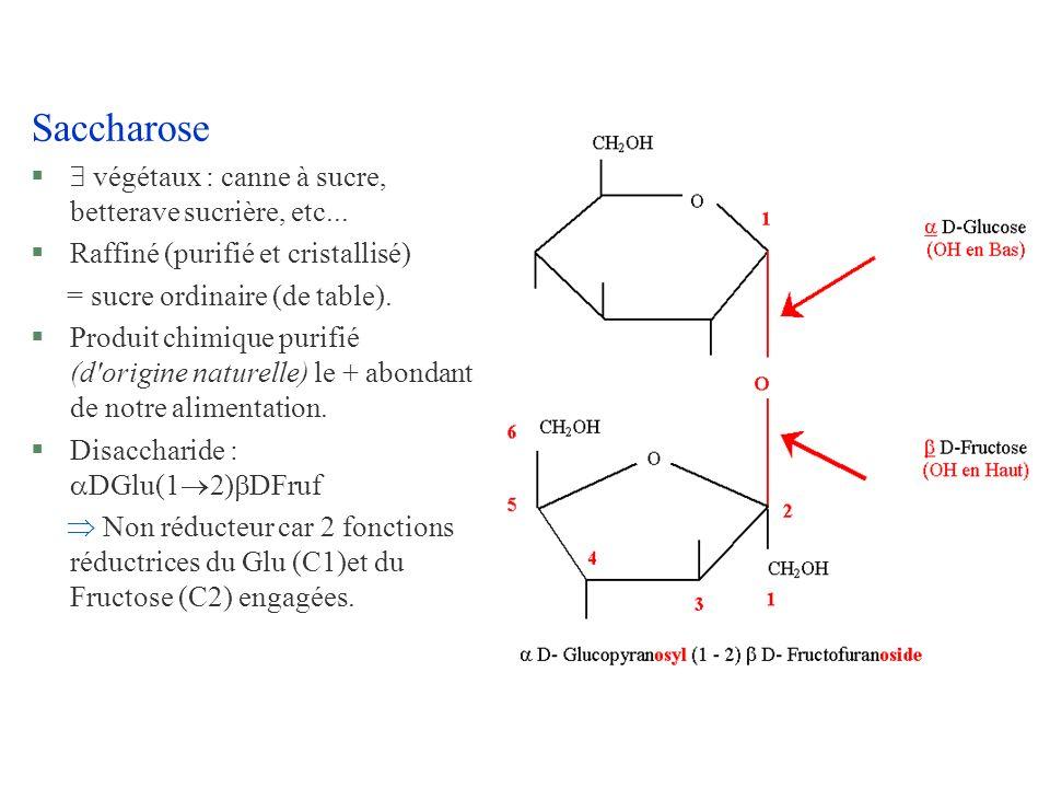 Saccharose § végétaux : canne à sucre, betterave sucrière, etc... §Raffiné (purifié et cristallisé) = sucre ordinaire (de table). §Produit chimique pu