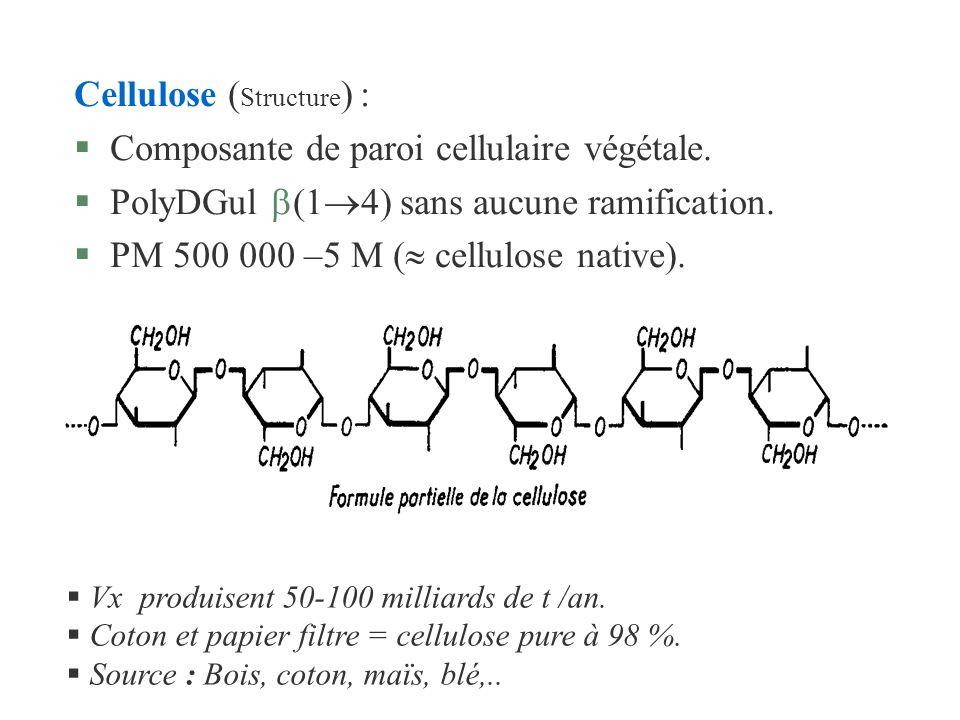 Cellulose ( Structure ) : Composante de paroi cellulaire végétale. PolyDGul (1 4) sans aucune ramification. PM 500 000 –5 M ( cellulose native). Vx pr
