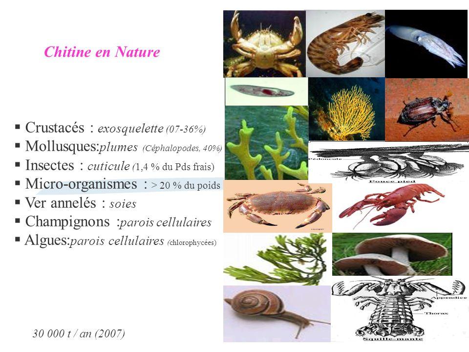 Crustacés : exosquelette (07-36%) Mollusques: plumes (Céphalopodes, 40%) Insectes : cuticule (1,4 % du Pds frais) Micro-organismes : > 20 % du poids V