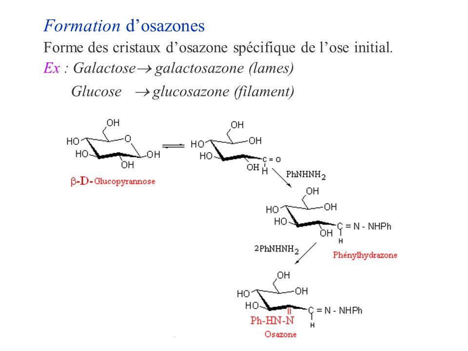 Formation dosazones Forme des cristaux dosazone spécifique de lose initial. Ex : Galactose galactosazone (lames) Glucose glucosazone (filament)