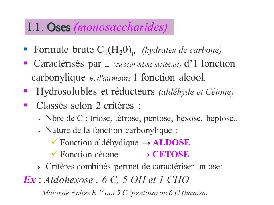 §Formule brute C n (H 2 0) p (hydrates de carbone). Caractérisés par (au sein même molécule) d1 fonction carbonylique et d'au moins 1 fonction alcool.