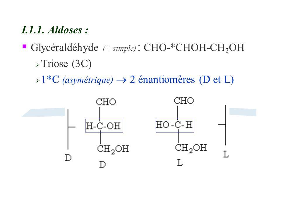 I.1.1. Aldoses : Glycéraldéhyde (+ simple) : CHO-*CHOH-CH 2 OH Triose (3C) 1*C (asymétrique) 2 énantiomères (D et L)