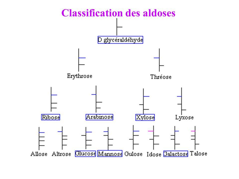 I. 1. 2. Cétoses : Dihydroxyacétone (+ simple): CH 2 OH-CO-CH 2 OH Triose (3 C) Pas de *C