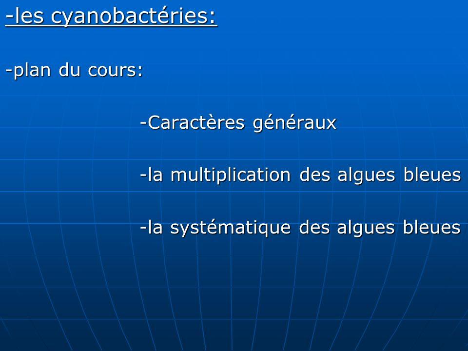 -les cyanobactéries: -plan du cours: -Caractères généraux -Caractères généraux -la multiplication des algues bleues -la multiplication des algues bleu