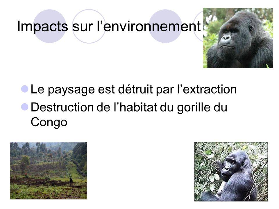 Impacts sur lenvironnement Le paysage est détruit par lextraction Destruction de lhabitat du gorille du Congo