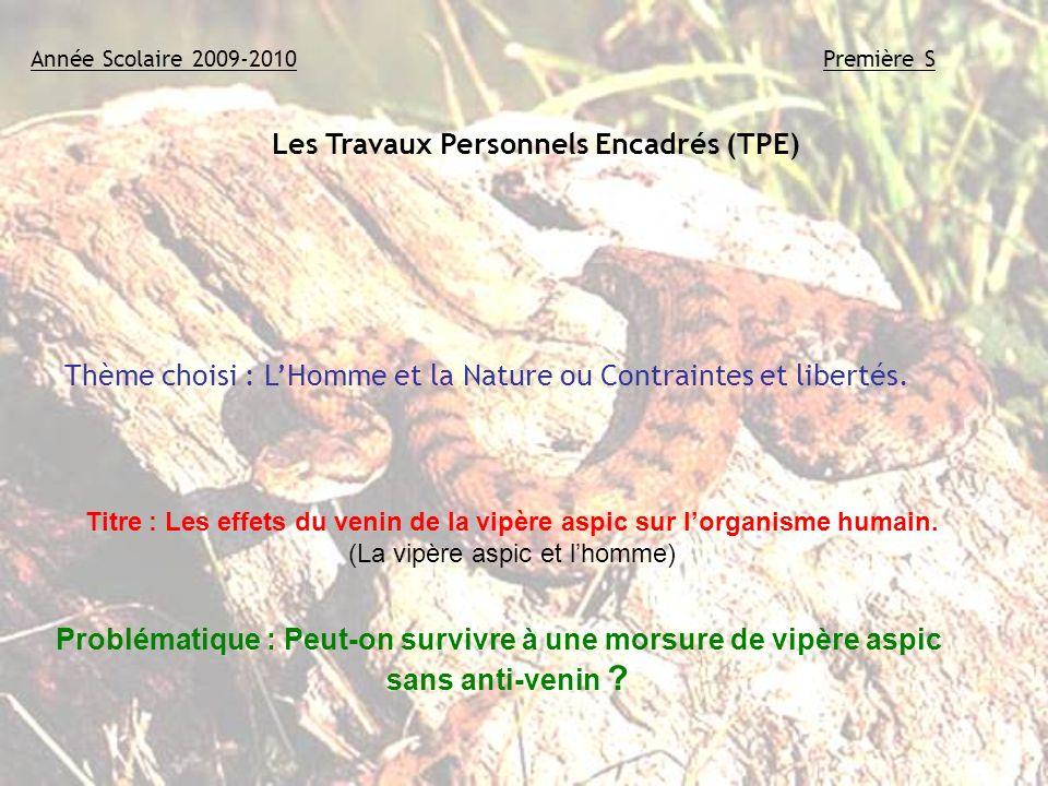 Les Travaux Personnels Encadrés (TPE) Année Scolaire 2009-2010Première S Groupe : ZOUEIN Carole EL AISSAOUI Dounia KARREY Jafar Thème choisi : LHomme
