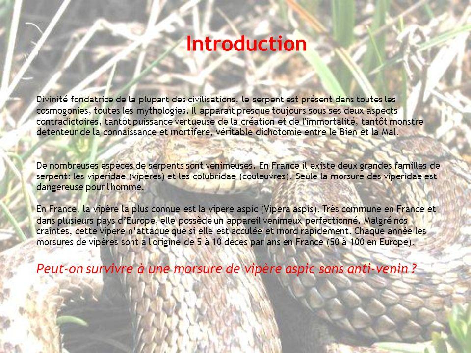 La morsure de la vipère aspic nest pas mortelle pour certain cas.