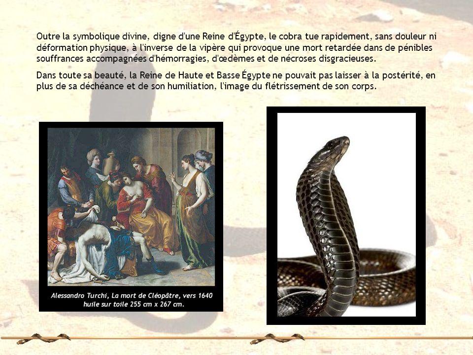 Outre la symbolique divine, digne d'une Reine d'Égypte, le cobra tue rapidement, sans douleur ni déformation physique, à l'inverse de la vipère qui pr