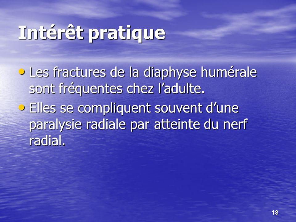 Intérêt pratique Les fractures de la diaphyse humérale sont fréquentes chez ladulte. Les fractures de la diaphyse humérale sont fréquentes chez ladult