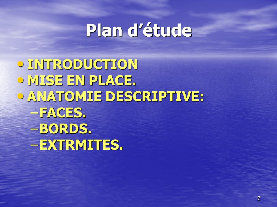 Plan détude INTRODUCTION INTRODUCTION MISE EN PLACE. MISE EN PLACE. ANATOMIE DESCRIPTIVE: ANATOMIE DESCRIPTIVE: –FACES. –BORDS. –EXTRMITES. 2