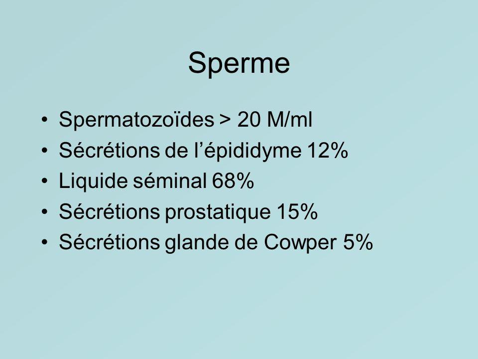 Sperme Spermatozoïdes > 20 M/ml Sécrétions de lépididyme 12% Liquide séminal 68% Sécrétions prostatique 15% Sécrétions glande de Cowper 5%