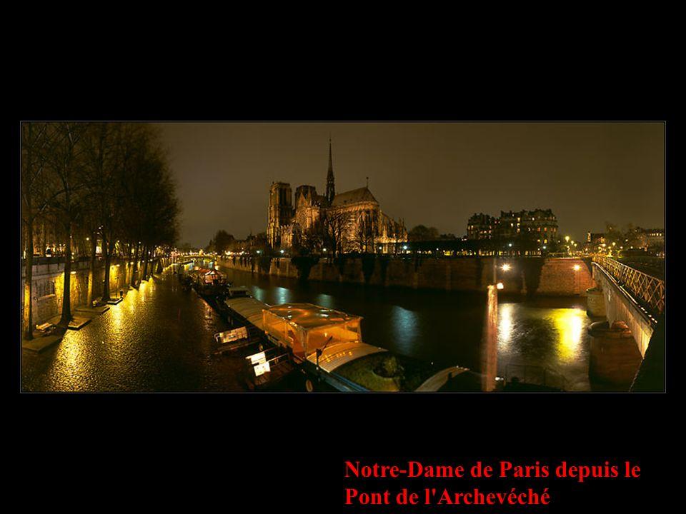 Notre-Dame de Paris depuis le Pont de l'Archevéché