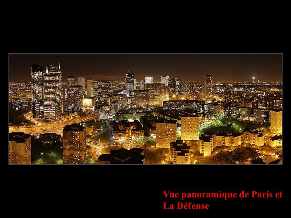 Vue panoramique de Paris et La Défense