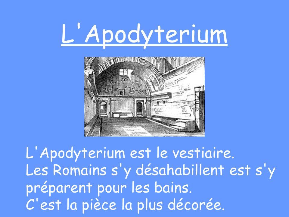 L'Apodyterium L'Apodyterium est le vestiaire. Les Romains s'y désahabillent est s'y préparent pour les bains. C'est la pièce la plus décorée.
