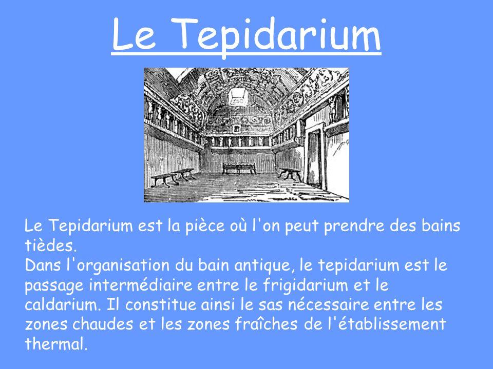 Le Tepidarium Le Tepidarium est la pièce où l'on peut prendre des bains tièdes. Dans l'organisation du bain antique, le tepidarium est le passage inte