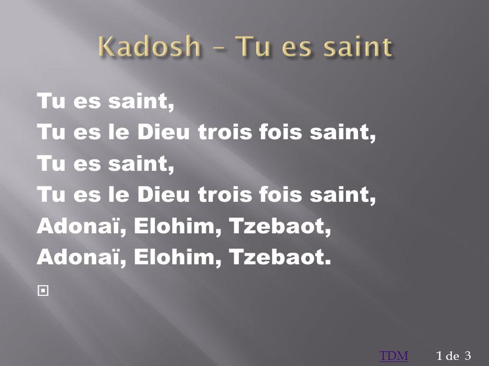 Tu es saint, Tu es le Dieu trois fois saint, Tu es saint, Tu es le Dieu trois fois saint, Adonaï, Elohim, Tzebaot, Adonaï, Elohim, Tzebaot. 1 de 3TDM