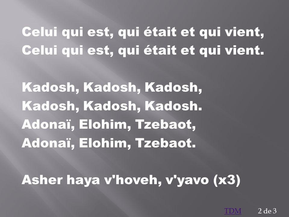 Celui qui est, qui était et qui vient, Celui qui est, qui était et qui vient. Kadosh, Kadosh, Kadosh, Kadosh, Kadosh, Kadosh. Adonaï, Elohim, Tzebaot,